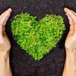 Comment protéger l'environnement ?